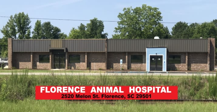 State-of-the-art Animal Hospital